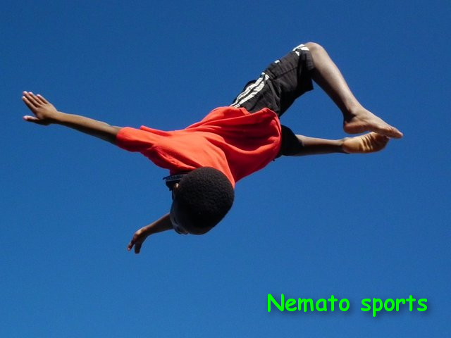 Nemato township sports clubs: rowing, gymnastics, handball and fencing